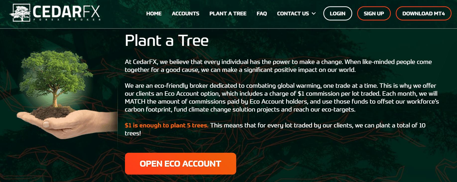 plant a tree cedarfx eco account